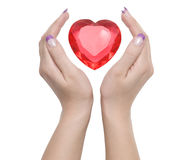 Heart and hands. Heart between two female hands Stock Image