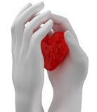 Heart in the hands Stock Image