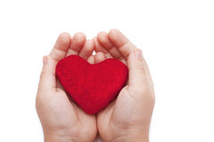 Heart in the hands of a closeup. Children's hands holding a red velvet heart Royalty Free Stock Photo