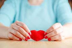 Heart in hands, female holds handmade sewn soft toy Stock Images