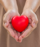 Heart in hands for give with love stock images