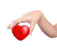 Heart in the hands isolated Stock Photo