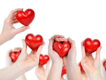Heart in hands Royalty Free Stock Image