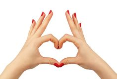 Heart in Hands on Isolated White Background Stock Image