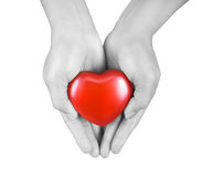 Heart in the hands Royalty Free Stock Image