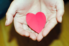 Heart in hands. Little child holding paper heart in hands royalty free stock photography