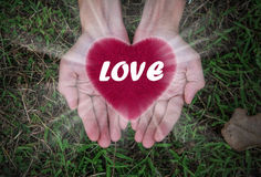 Heart in  hands ,Love, Valentine`s day background Royalty Free Stock Images