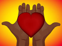 Heart in hands Stock Photography
