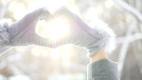 Heart from hands at sunset winter, snow, christmas trees, love. Sun stock video footage