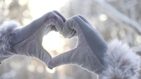 Heart from hands at sunset winter, snow, christmas trees, love. Sun stock footage