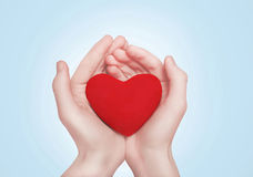 Heart in hands Stock Photos