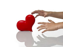 Heart and hands Royalty Free Stock Photo