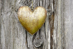 Heart hanging at tree bark Stock Photography
