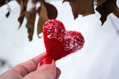 Heart. Happy Valentine`s Day emotions for lovers Stock Images