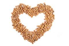 Heart from hazel nuts Royalty Free Stock Photos