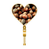 Heart with hazelnuts. Heart shape made of zip filled with hazelnuts texture royalty free illustration