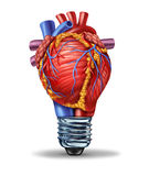 Heart Health Ideas. And new cardiovascular research innovation as a medical concept with a human blood pumping organ in the shape of a light bulb as a symbol of stock illustration