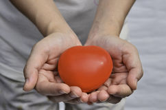 Heart in heart hands Royalty Free Stock Images