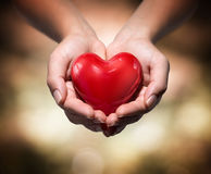 Heart in heart hands- warm background royalty free stock images