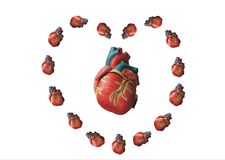 Heart in hearts Stock Photos