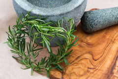 A heart of herb. In front of a mortar for design cooking book Stock Images