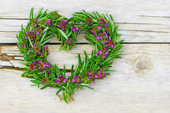 Heart of herb Stock Images