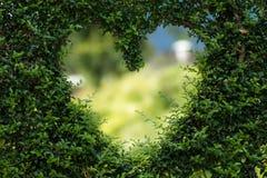 Heart, Herzchen, Love, Romance Stock Photography