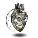 Heart. Human heart gears and time spirial Stock Photos