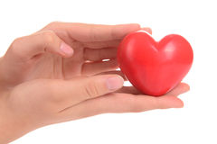 Heart in human hands Royalty Free Stock Photos
