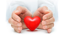 Heart at the human hands. Red heart is protected by the human hands stock photography