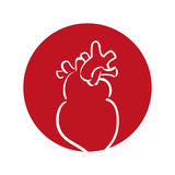 Heart human organ health red background Royalty Free Stock Photos