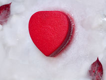 Heart  in ice Stock Images
