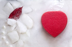 Heart  in ice Royalty Free Stock Photos