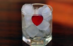 Heart in ice. Red heart in glass with the cubes of ice stock photography