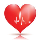 Heart Icon. Glossy red heart icon with normal EKG sinus rhythm,great for web,print or presentation Royalty Free Stock Images