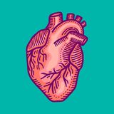 Heart icon, hand drawn style vector illustration
