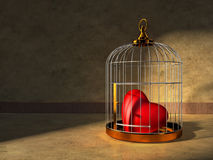 Heart In A Cage Stock Photography