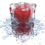 Heart inside the ice cube Stock Image