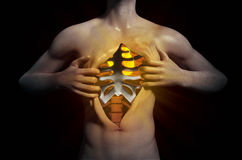Heart inside a ripped open chest Royalty Free Stock Images