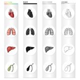 Heart, internal organ, lung of a person, liver, gall bladder. Human organs set collection icons in cartoon black. Monochrome outline style vector symbol stock Stock Photos