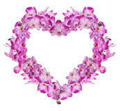 Heart from isolated pink orchid flowers Royalty Free Stock Image