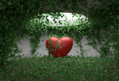 Heart ivy room Royalty Free Stock Images