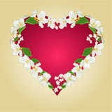 Heart with jasmine vector Royalty Free Stock Photo