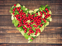 Heart from juicy red berries and green leaves of cowberry Royalty Free Stock Photography