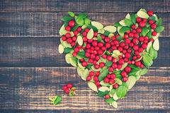 Heart from juicy red berries and green leaves of cowberry Royalty Free Stock Photos