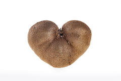 The heart of kiwi. Kiwi heart-shaped love of nature Royalty Free Stock Images