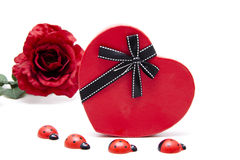Heart with ladybug and rose Royalty Free Stock Photo