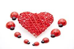 Heart with ladybug Royalty Free Stock Image
