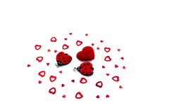 Heart and ladybugs Royalty Free Stock Photo