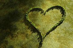 Heart landscaping. Original green background, lovely heart Royalty Free Stock Photography